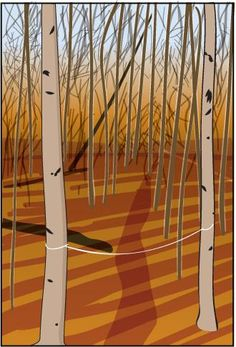 Trail Threads Here's a simple, inexpensive way to nail down a good location for your deer stand. Look for deer trails in the area you plan to hunt, and tie a piece of light-colored sewing thread waist-high (or lower) between two trees on either side of a trail. Do likewise at other trail spots. If you return and find a thread broken, you'll know deer are still using that trail, and you can place your stand nearby.