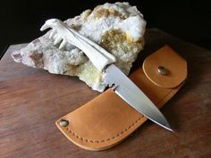 Alligator Jaw Bone, Small Stainless Steel Pen Knife,  Belt Sheath.