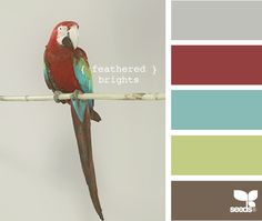 feathered brights (Gray: matched to Benjamin Moore 1466 Smoke Embers; Red: Benjamin Moore 2084-20 Maple Leaf Red; Blue: Sherwin Williams SW1481 Vizcaya; Brown: Sherwin Williams SW1105 Tortoise; can't match the green well, but Sherwin Williams SW6716 Dancing Green would work)