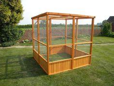 Outdoor Bird Aviary Plans #aviariesideas #howtobuildanaviary