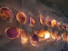 NANTUCKET SCALLOP SHELL Strand of Lights   Plug by MaidenNantucket, $110.00