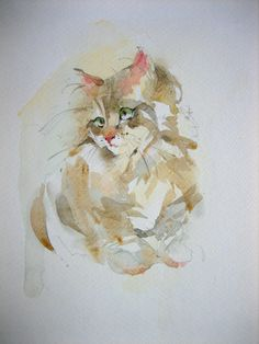 Explore anelest's photos on Flickr. anelest has uploaded 394 photos to Flickr. Watercolor Paintings Of Animals, Art Watercolor, Animal Paintings, Pictures To Draw, Art Pictures, Rainbow Art, Cat Drawing, Beautiful Cats, Beautiful Paintings
