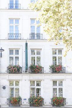 Red geraniums in Paris. #paris #flowers Paris Home Decor, French Home Decor, St Germain Paris, Saint Germain, Flower Boxes, Flowers, Paris Architecture, Paris Wall Art, Red Geraniums