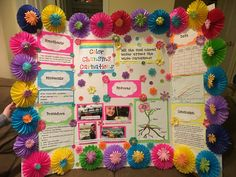 Coloring Flowers Science Fair Project Fresh Color Changing C Science Project Board, Science Fair Board, Science Fair Experiments, Science Fair Projects Boards, Science For Kids, School Projects, Amazing Flowers, Colorful Flowers, Global Warming Project