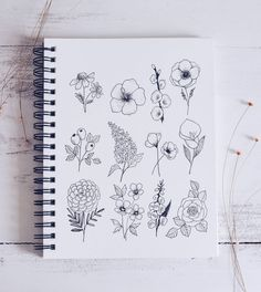 "Shayda Campbell on Instagram: ""My 12 Easy Flower Doodles video is ready to watch now on the YouTube channel! Saturdays are for drawing, yes?? ✏️❤️ . . . . . . . . . . . .…"""