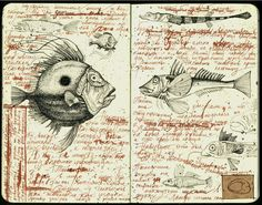 Andrea Joseph's journal illustrations    would maybe like to style my sketch book like this