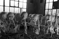 ces photos vintage d'une usine de poupée font frissonner... - http://www.2tout2rien.fr/ces-photos-vintage-dune-usine-de-poupee-font-frissoner/