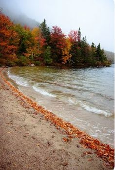 autumn beach, sounds cute