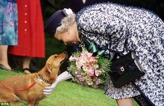 Dog lover: The Queen with one of the Corgis she bred in 1998