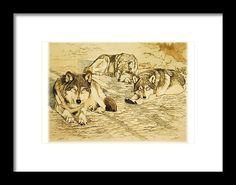 Wynken, Blynken, and Nod - wolves by Susie Gordon  SusieGordonFineArt.com