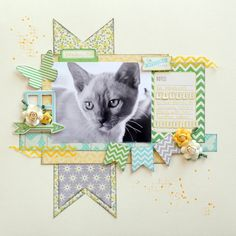 grey kitty 0031.jpg (540×540)