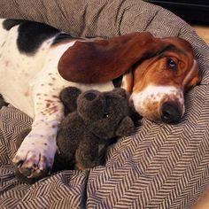 Sleeping with teddy bear