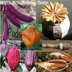 March 2017 Challenge Theme   ❤ =^..^= ❤