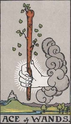 """Ace of Wands: """"In the future position, this card indicates that a big break is ahead, but it is a blessing. The break will come on your own terms but may appear to others to be fate or circumstance. The Ace of Wands is not a card of defiance, nor destruction; it is a card of creating new realities that benefit you and others. The old order might be discarded in the process but the Ace of Wands shows that you will build a new order of things while the old structures around you are falling…"""