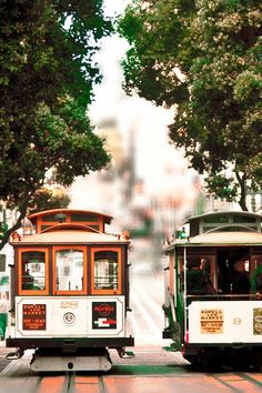 San Francisco Art, Cable Cars, California Print, Beige, Brown, Green, San Francisco Photography