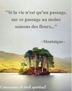 """Si la vie n'est qu'un passage. Citation Souvenir, Quote Citation, Motivational Messages, Inspirational Quotes, Human Nature, More Than Words, Positive Affirmations, Words Quotes, Positive Vibes"