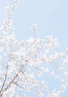 Aesthetic Dream — Bright Blue Aesthetic // Aesthetic Dream