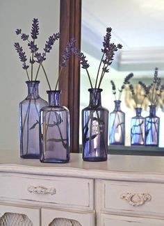 Lavender in lavender!  Simply beautiful!
