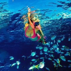 Over 25 years of snorkeling at #Maui Molokini Crater, Boss Frog has the perfect day in store for you.http://mauiticketsforless.com/molokini-snorkeling/quicksilver-frogman-charters.html#.VKEDpl4AA
