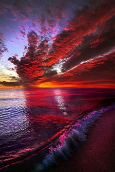 I Wake as a Child to See the World Begin is part of Amazing sunsets - Sunrise on the shore of Lake Michigan Wisconsin Horizons By Phil Koch philkoch artistwebsites com Amazing Sunsets, Amazing Nature, Landscape Photography, Nature Photography, Photography Jobs, Photography Lighting, Photography Classes, Softbox Photography, Photography Basics
