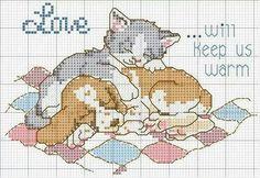 Puppy kitty cuddles