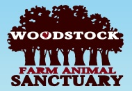 This organization rescues abused and neglected farm animals, and educates people about the horrors associated with the meat industry.