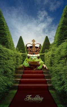 So I had this dream and in it the Frog King was going to eat me.    ?????