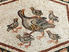 Lod Roman mosaic, rock partridge and chicks.http://helenmilesmosaics.org/mosaic-sites/lod-roman-mosaic/