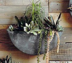 Roost Orbea Zinc Circle Planters are made from galvanized iron with an aged zinc finish. Perfect for succulents and small plants, these full and half-circle wall planters are both rustic and original. Wall Mounted Planters, Metal Wall Planters, Indoor Planters, Outdoor Plants, Hanging Planters, Outdoor Walls, Planter Pots, Indoor Outdoor, Zinc Planters