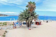 El crimen también se va a la playa en vacaciones; Suman Acapulco y Los Cabos seis ejecuciones frente a turistas | El Puntero