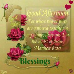 Matthew 8:20  Good Afternoon!