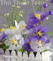 Cách làm hoa voan - hoa tường vi - Thủ thuật Teen