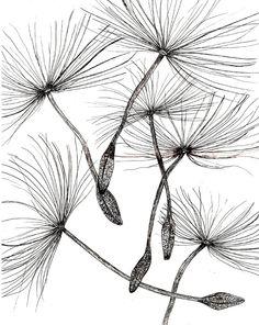 Doodle Patterns 513973376223322161 - desde Madeline Jenkins Source by AnnaLiForest Illustration Design Graphique, Illustration Botanique, Illustration Art, Zentangle Drawings, Zentangle Patterns, Art Drawings, Doodle Patterns, Pencil Drawings, Flower Sketches