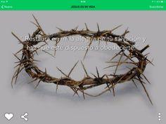 """""""Restaura en mí la alegría de tu salvación y haz que esté dispuesto a obedecer."""