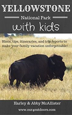 Yellowstone National Park with Kids: Hints, tips, itineraries, and trip reports to make your family vacation unforgettable! by Harley McAllister, http://www.amazon.com/dp/B00T5SYDLK/ref=cm_sw_r_pi_dp_gOfevb1BX69XS