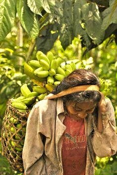 woman banana farmer, San Martin, Colombia in the Amazon