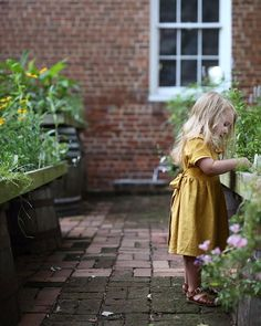 Herb Garden, Garden Plants, Garden Kids, Grow Together, Pretty Flowers, Herbs, Summer Dresses, Instagram Posts, Vintage