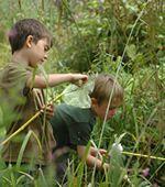 Bodenham Arboretum Forest School