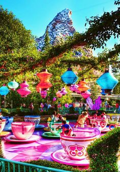 Disney teacups. Gommie -The heavier you are the faster you go! Love you
