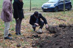 Trwają dalsze prace przy sarkofagu | Gmina Brody