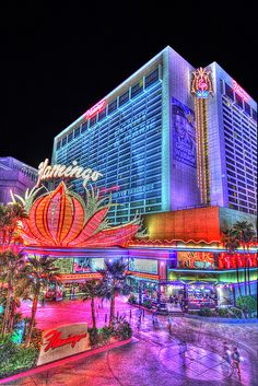 Staying here in February. The Flamingo, Las Vegas