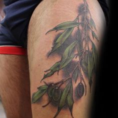 30 Olive Tree Tattoo Designs For Men - Olea Europaea Ink Ideas Olive Tree Tattoos, Olive Branch Tattoo, Tree Tattoo Men, Tree Tattoo Designs, Arm Tattoo, Sleeve Tattoos, Fox Tattoos, Deer Tattoo, Raven Tattoo