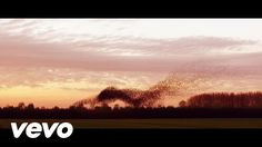 Marco Borsato - Mooi (official video) Marco is a dutch singer. But this videoclip is all about nature !! It is so beautiful. The song is called ''mooi '' means: beautiful.( How simple things can be so beautiful in life !!!!)