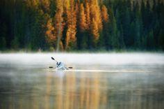Fishing Trillium by Brian Bonham on 500px