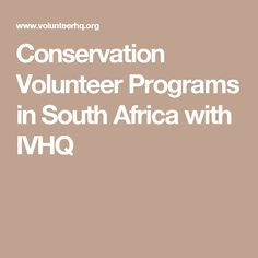 Conservation Volunteer Programs in South Africa with IVHQ