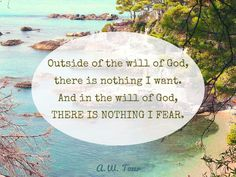 Outside of the will of God, there is nothing I want; and in the will of God, there is nothing I fear. - A. W. Tozer.