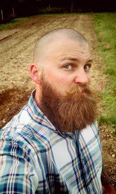 beard bald on pinterest. Black Bedroom Furniture Sets. Home Design Ideas
