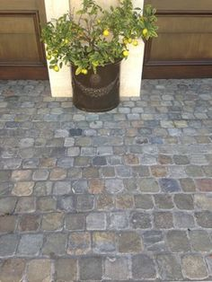 Historic Sidewalk Cobble is reclaimed cobblestone originally used in European pedestrian areas only Modern Driveway, Stone Driveway, Driveway Pavers, Cobblestone Walkway, Front Walkway, Driveway Landscaping, Landscaping Ideas, Paving Stones, Backyard Patio