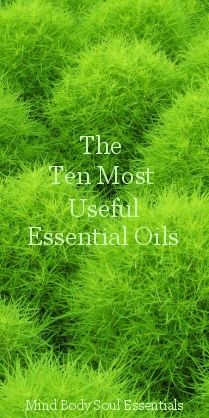 Herbs & The Ten Most Useful Essential Oils  including Lavender, Tea Tree, Peppermint, Chamomile, Eucalyptus, Geranium, Rosemary, Thyme, Lemon and Clove