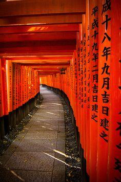 伏見稲荷大社, 京都  Torii gates - Fushimi Inari-taisha Shrine, Kyoto, Japan